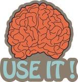 Erhaltenes Gehirn? Verwenden Sie es! Stockbilder