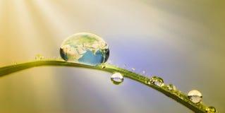 Erhaltungskonzept: Erde in einem Tröpfchen Stockbild