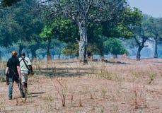 Erhaltungsoffizier und -photograph sieben afrikanische wilde Hunde in Simbabwe, Südafrika lizenzfreie stockfotografie