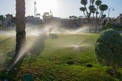 Erholungsort in Ägypten, Bewässerungssystem Lizenzfreie Stockfotografie