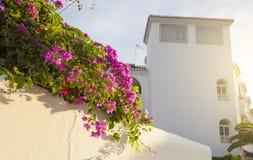 Erholungsortgebäude mit traditioneller andalusischer Architektur von Whit Lizenzfreie Stockfotografie