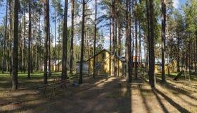 Erholungsstätte im Kiefernwald Stockbild