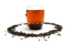 erhpu-tea Royaltyfri Fotografi