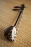 erhu kinesiska klassiska instrument Arkivbilder