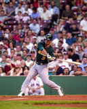 Eric Chavez, Oakland A's 3B. Stock Image