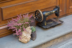 Erica carnea flower next to antique sewing machine decorating ho Stock Photo