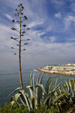 Ericeira Village. View of Ericeira fishing village Royalty Free Stock Images