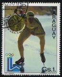 Erick Reiden-snelheidsschaatser bij de Winterolympics stock foto's
