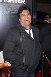 Erik Estrada. At 'The Fighter' Los Angeles Premiere, Chinese Theater, Hollywood, CA. 12-06-10 royalty free stock photos