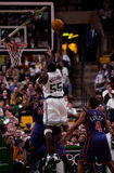 Erik Williams Boston Celtics Royaltyfri Bild