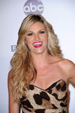 Erin Andrews Royalty Free Stock Image