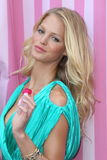 Erin Heatherton,Victoria's Secret Stock Image