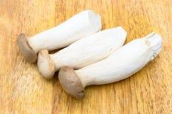 Eringii Mushrooms on the chopping block Stock Images