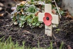 Erinnerungs-Mohnblume auf hölzernem Kreuz Stockbild