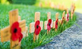 Erinnerungs-Mohnblumen auf hölzernen Kreuzen stockbild