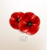 Erinnerungstag - 11. November - aus Furcht, dass wir vergessen stock abbildung