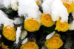 ErinnerungsWreath 01 Lizenzfreies Stockfoto