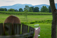 Eritas vingårdAfton berg Royaltyfria Bilder
