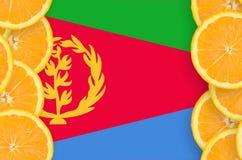 Eritrea flagga i vertikal ram för citrusfruktskivor royaltyfri bild