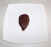 Erizo de la torta en una placa blanca Fotos de archivo