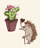 Erizo y cactus Foto de archivo libre de regalías