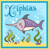 Erläuterter Alphabetbuchstabe X und Xiphias. stock abbildung