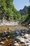Erlauf river Stock Image
