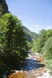 Erlauf river Royalty Free Stock Photo