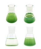 Erlenmeyer flask filled with liquid Royalty Free Stock Images