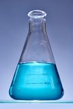 Erlenmeyer flaska Arkivbild