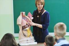 Erlernen Sie Biologie in der Schule stockfotos