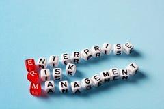 ERM Enterprise Risk Management Royalty Free Stock Photo