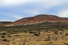Ermo bonito no vale de Chubut, Argentina foto de stock