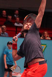 Ernests Gulbis (LAT) Stock Images