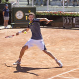 Ernests Gulbis Royalty Free Stock Image