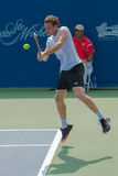 Ernests Gulbis Royalty Free Stock Photo