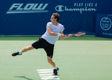 Ernests Gulbis Stock Photos