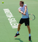 Ernests Gulbis Royalty Free Stock Photography