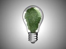 Erneuerbare Energie. Glühlampe mit Grünpflanze Lizenzfreie Stockbilder