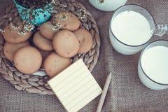 Erneuernde organische weiße Vollmilch und Plätzchen Lizenzfreie Stockfotos