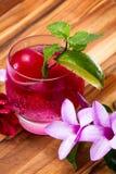 Erneuerndes tropisches Cocktail mit frischen Blumen Lizenzfreies Stockbild