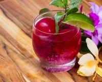 Erneuerndes tropisches Cocktail mit frischen Blumen Stockbild