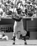 Ernie Banks fotos de archivo libres de regalías