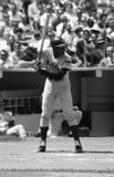 Ernie deposita Chicago Cubs imagen de archivo libre de regalías