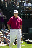Ernie Els on the 9th Green - NGC2010 Royalty Free Stock Photos