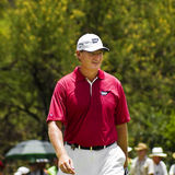 Ernie Els - NGC2010 Royalty Free Stock Images