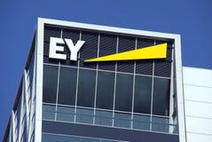 Ernst и молодые штабы в Амстердаме Стоковое Изображение RF
