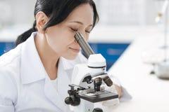 Ernste angenehme Frau, die Mikroorganismen studiert lizenzfreie stockbilder