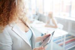 Ernste Dame, die digitale Tablette im Büro verwendet lizenzfreie stockbilder
