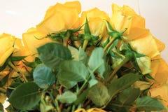 Ernster Blumenstrauß von Blumen für schöne Damen, Bündel Rosen lizenzfreie stockbilder